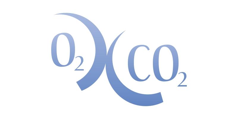 02xc02 Proyecto medioambiental